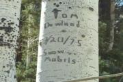 Toms Camera 4Q2012 353